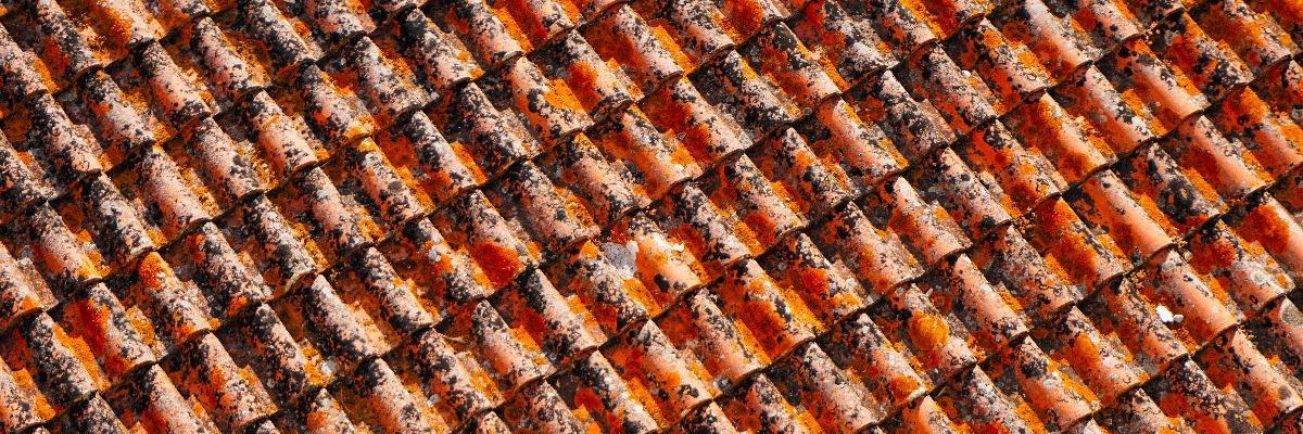 Vue rapprochée sur les tuiles d'un toit