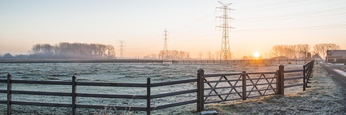 Vue d'un champs sous le givre et de poteaux électriques lors du lever du soleil