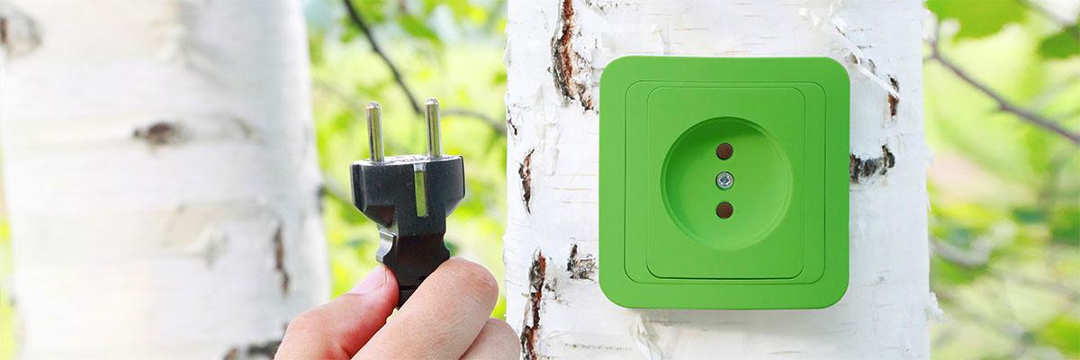 une prise verte est connectée sur un arbre