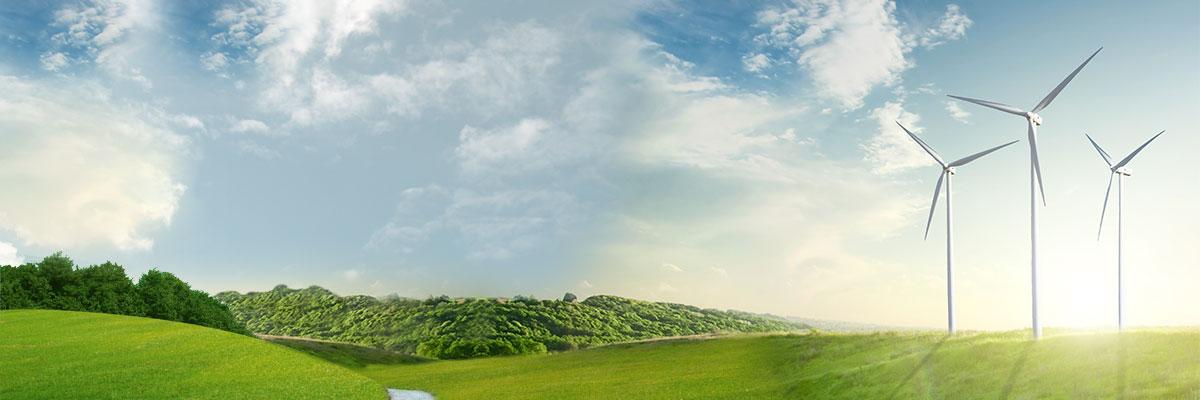 des éoliennes sont dans un champs ensoleillé