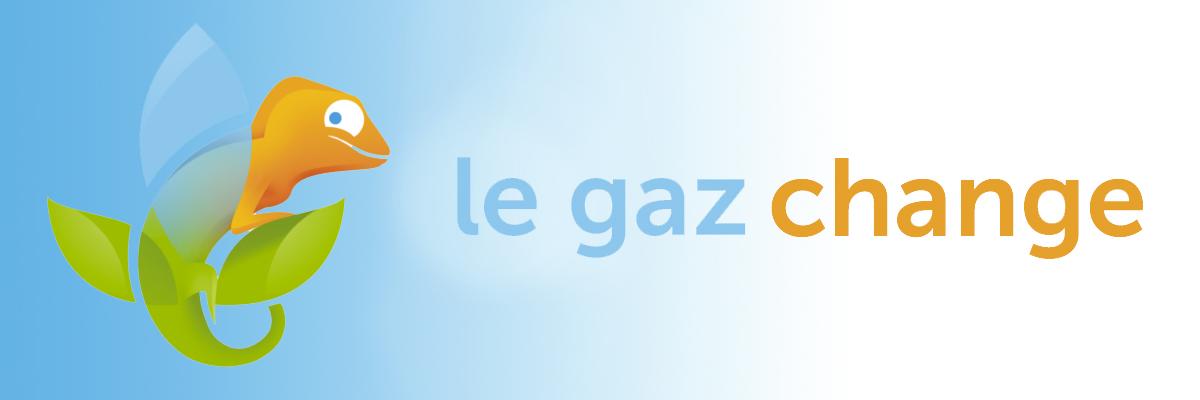 caméléon symbolisant la conversion gaz - le gaz change